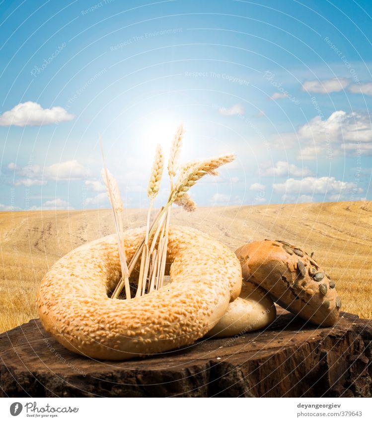 Himmel Natur schön Pflanze Landschaft schwarz gelb Leben braun Kunst gold Kochen & Garen & Backen Bauernhof Brot Tradition Brötchen