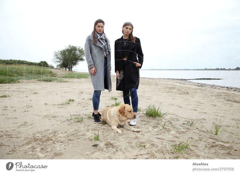 Portrait zwei jungen Frauen -  Freundinnen - am Elbstrand mit blondem Labrador junge Frau 18-25 Jahre warmherzig schön charmant schlank brünett lange Haare