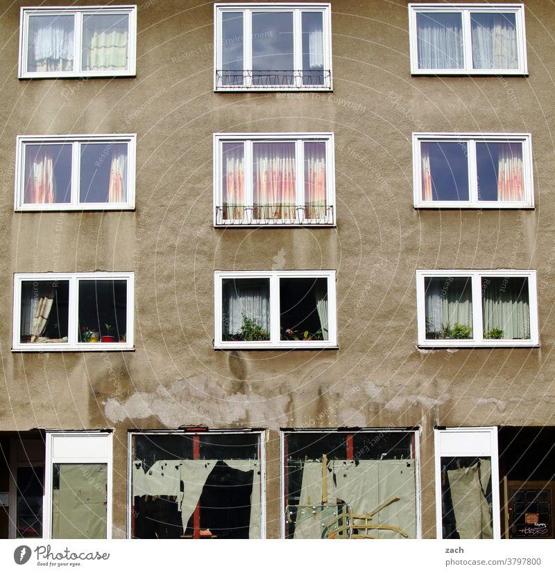 hinter den Fassaden Haus Mauer Wand Bauwerk Straße Plattenbau Tür kaputt Kassel Linien alt trist grau Fenster Armut Ruine Wohnung wohnen Wohnhaus Gardine