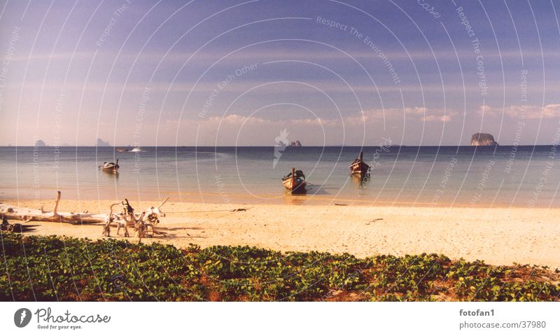 ein Ort der Träume Meer Strand Ferien & Urlaub & Reisen Wasserfahrzeug Felsen Thailand Los Angeles Warme Farbe