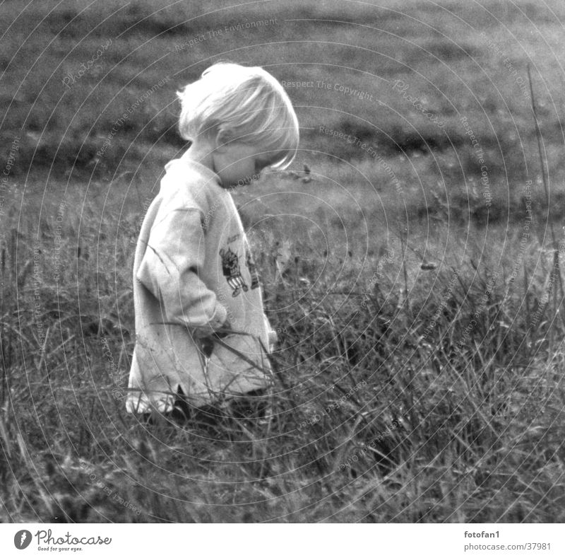 traurig? Kind Einsamkeit Wiese Junge Gras Haare & Frisuren Traurigkeit Denken blond Trauer verträumt Mensch