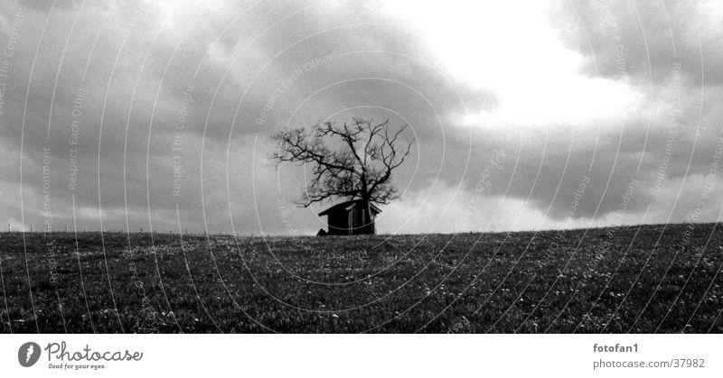Einsame Hütte Scheune Allgäu Regenwolken