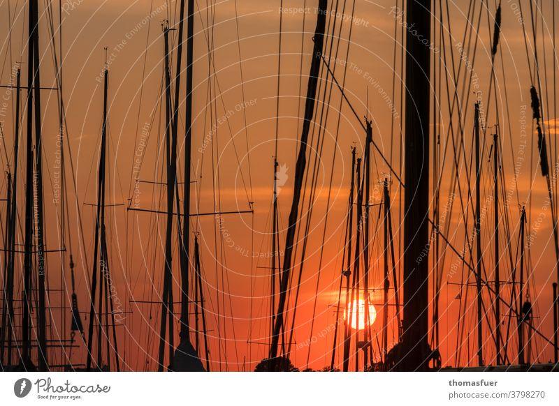 Sonnenuntergang im Hafen mit Segelbooten, Masten Marina Himmel Takelage Wasserfahrzeug Schifffahrt Segeln Meer Wolken Ruhe farbig Stimmung gedrängt