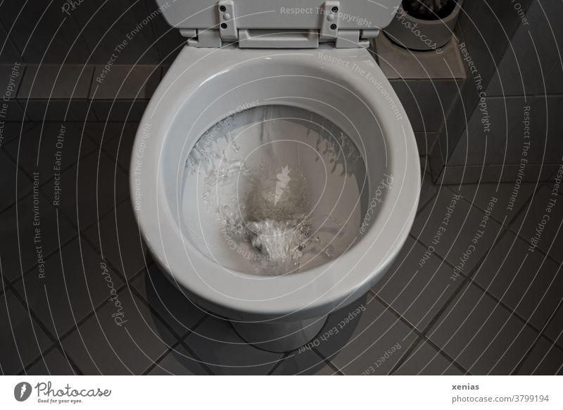 Welle im Klo - Kostbares Trinkwasser sprudelt über die Toilettenspülung in den Kanal Badezimmer Fliesen u. Kacheln Wasser Häusliches Leben sanitär
