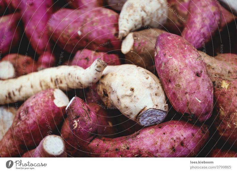 Detailansicht von violetten Süßkartoffeln und weißem Wurzelgemüse auf einem lokalen Markt in Merida, Yucatan, Mexiko Gemüse Detailaufnahme purpur süß Ackerbau