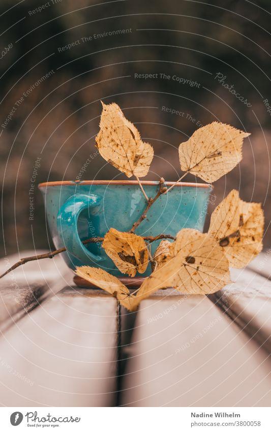 Blaugrüne Tasse mit gelben Blättern auf einer Bank Herbst Blatt herbstlich Herbstlaub Laubwerk Natur trinken Saison Oktober November natürlich im Freien