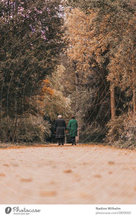 Ein altes Ehepaar geht in einem herbstlichen Park spazieren Paar Händchenhalten gehen Spaziergang Spaziergang in der Natur Zusammensein paarweise Mann Frau