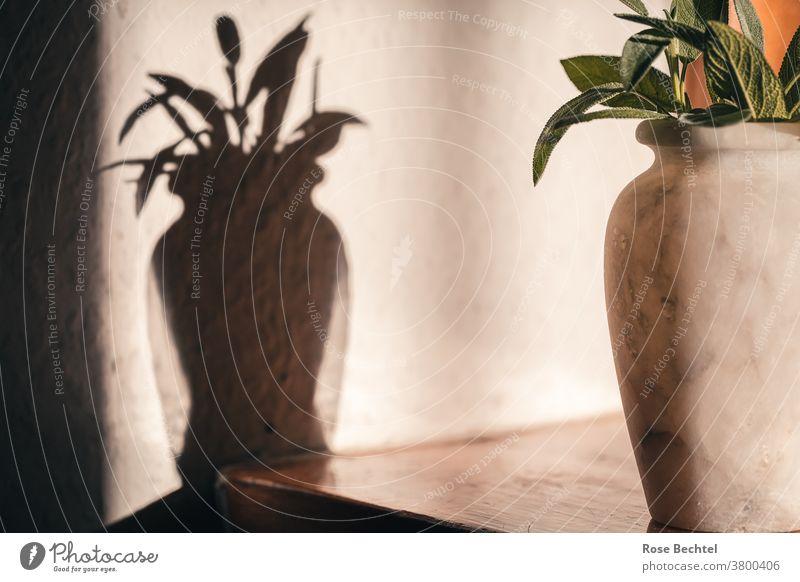 Marmorvase mit Salbeiblättern Stillleben Vase Schatten Farbfoto Menschenleer Innenaufnahme Blumenstrauß Dekoration & Verzierung Lifestyle Häusliches Leben