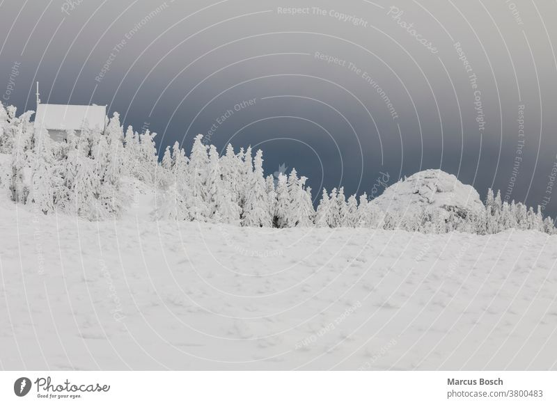 Winterlandschaft Arber Arbermandl Blumenwiesen Grosser Arber Himmel Mittelgebirge Mittelgebirgslandschaft Nadelwald Schneelandschaft Tiefwinter Waelder Wald