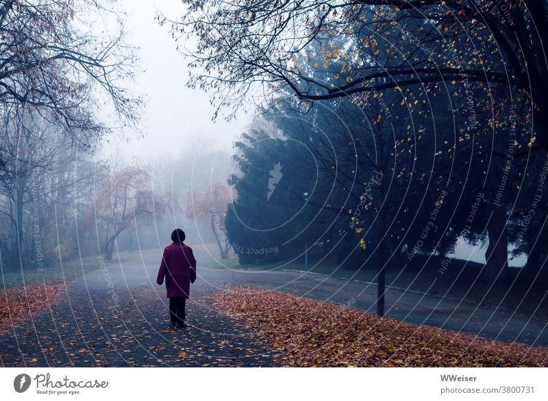Novemberspaziergang im nebeligen Park Nebel Herbst Frau Dämmerung kalt früh Morgen München Olympiapark Laub Jahreszeit Melancholie undeutlich ungewiss alte Frau
