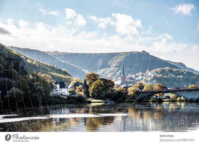 märchenmosel | moselmärchen Wasser Spiegelung Sonnenlicht Jahreszeiten herbstlich Herbst Hunsrück Rheinland-Pfalz Flussufer Mosel (Weinbaugebiet) Moseltal Ruhe