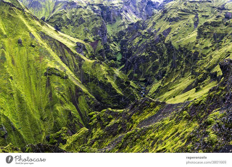 Blick in eine felsige, schroffe Schlucht bei Thakgil, Island Felsen grün abweisend Berge Hänge Landschaft einsam Außenaufnahme Natur menschenleer wandern Urlaub