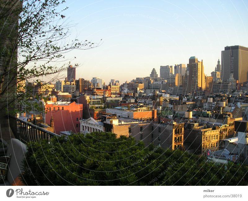 NYC Herbst Gebäude Architektur New York City Momentaufnahme Brooklyn
