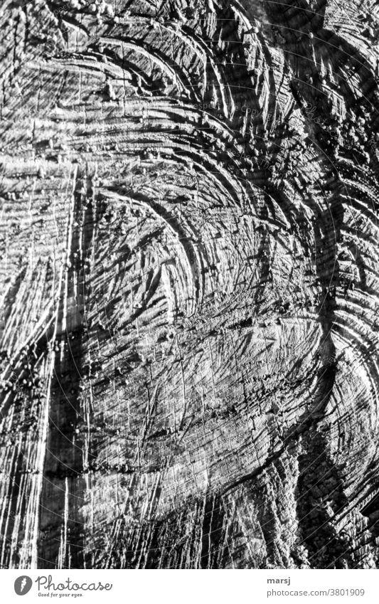 Holzstrukturen in Schwarz-Weiß Holzmaserung Maserung natürlich kaputt zerfurcht authentisch abstrakt Jahresringe Schnittspuren Sägeschnitt Muster