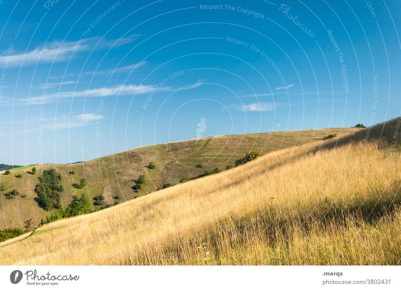 Im Kaiserstuhl Natur Gras Hügel Landschaft Himmel Schönes Wetter Idylle Erholung Sommer Tourismus Ausflug
