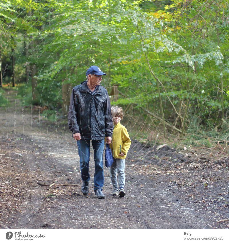 Opa und Enkel im Wald unterwegs Mensch Mann Senior Großvater Kind Junge Spaziergang Waldweg gemeinsam Außenaufnahme Zusammensein Familie & Verwandtschaft alt
