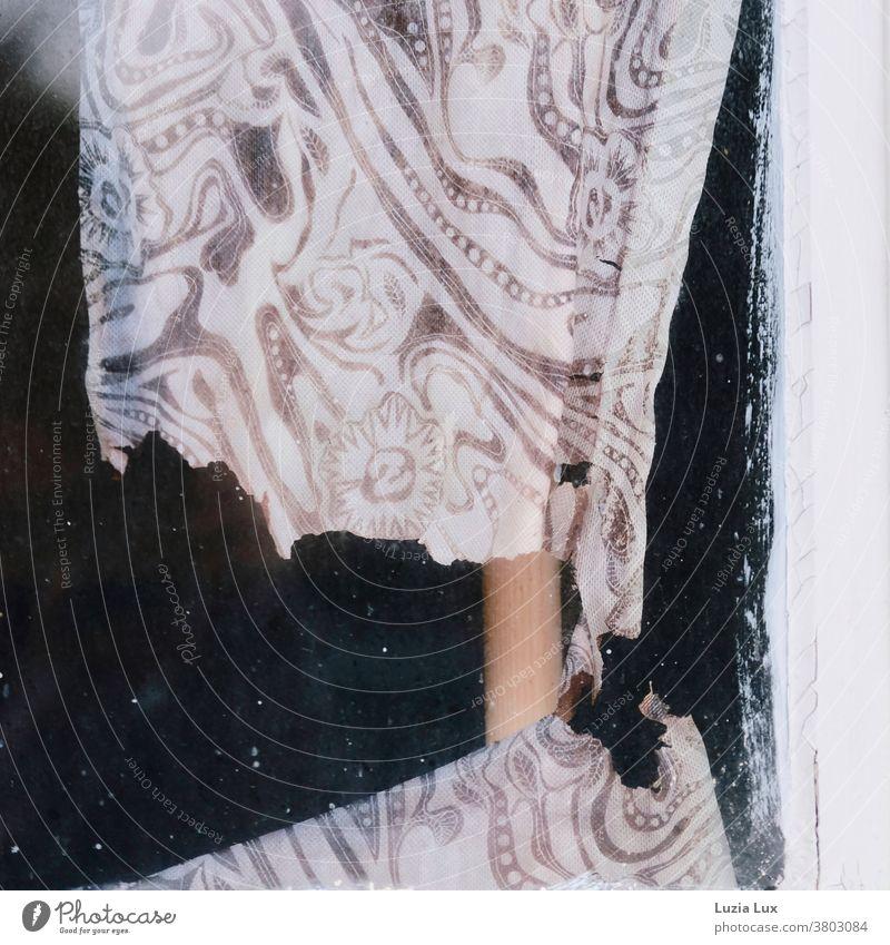 Niemand mehr Zuhause, vergänglich: eine alte, zarte Gardine hinter dem Fenster eines leerstehenden Hauses. Vorhang zerrissen vergessen durchscheinend braun weiß