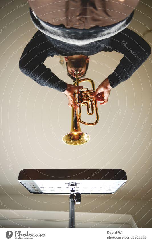 Musiker übt mit seiner Trompete Trompeter üben Notenständer spielen Musikinstrument disziplin Künstler musizieren Klang Freizeit & Hobby ehrgeizig Erfolg Mann