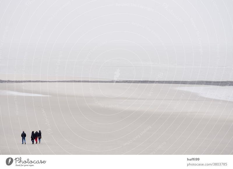 Menschen bei Ebbe am Strand Menschengruppe Wattwandern Wattenmeer Winter Herbst Menschenmenge Nordsee Bewegung trocknen außergewöhnlich hell gehen Nordseeküste