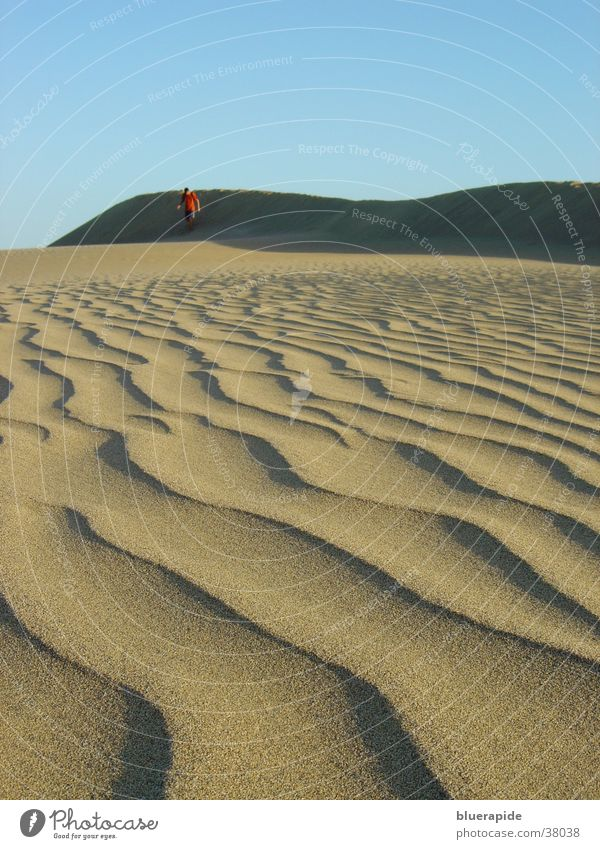 Sanddünenmuster Muster körnig Wellen Stranddüne Wüste Korn Strukturen & Formen Himmel blau Sandkörn