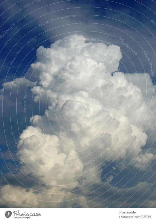 Cumuluswolke Wolken Kumulus weiß Watte luftig bedrohlich kalt groß weich blau Himmel hell füllend