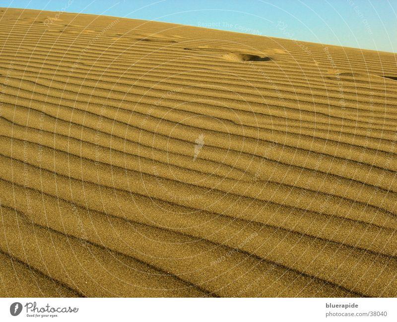 Fussspuren im Dünensand gelb Sand Wüste Spuren Stranddüne Korn