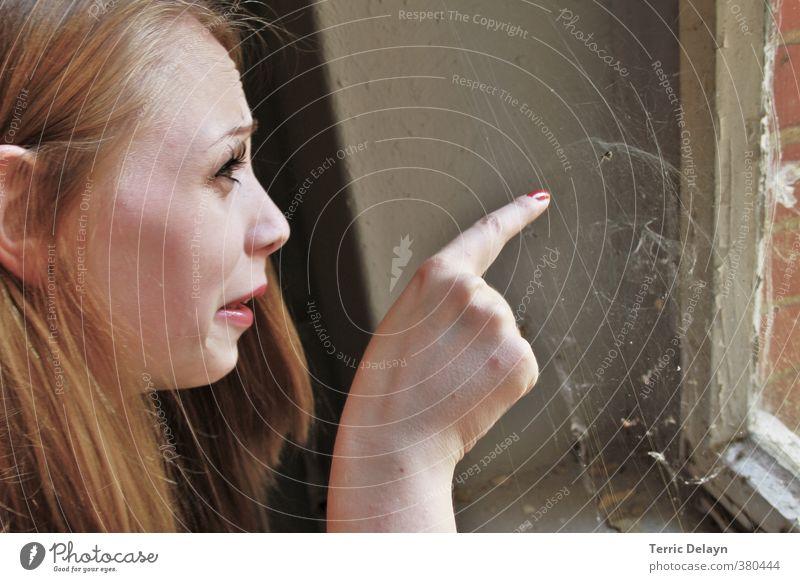 der pure Ekel feminin Junge Frau Jugendliche Kopf 1 Mensch 18-30 Jahre Erwachsene Tier Fenster blond Spinne beobachten gruselig Entsetzen zeigen Spinnennetz