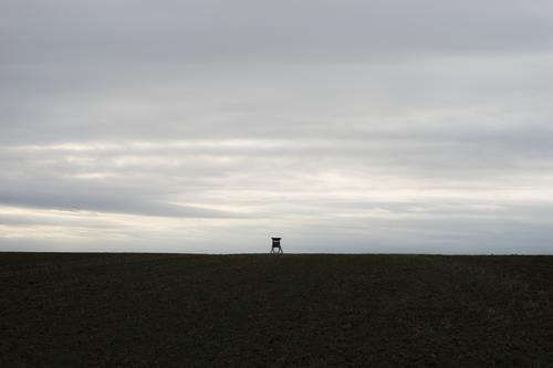 Hochsitz und kahler Acker vor grauem Himmel Landschaft klein bewölkt Jagd Monokultur Öde zentriert winzig fern Feld Artensterben Umweltzerstörung leer niemand