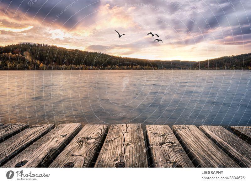 Der Stausee Soboth im Dreiländereck Kärnten-Slowenien-Steiermark See Landschaft Außenaufnahme Natur Farbfoto Seeufer Umwelt Schönes Wetter Himmel