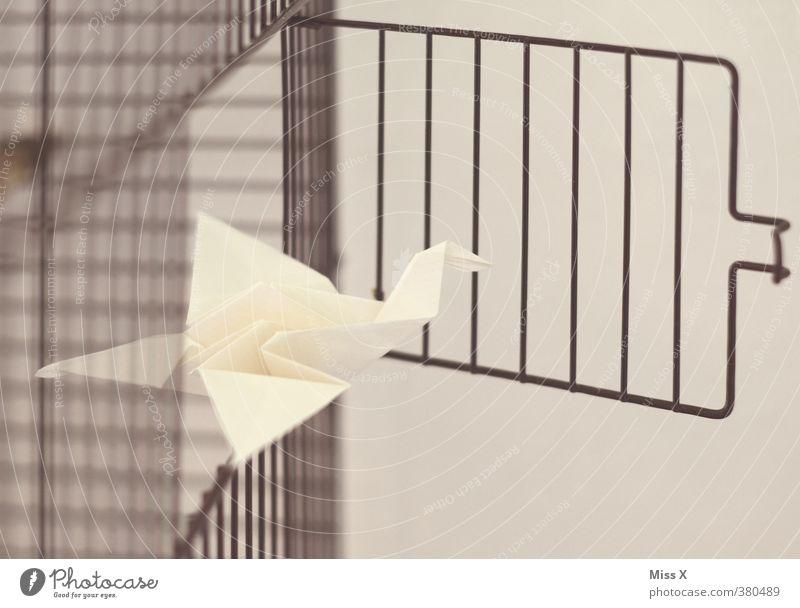 Vogelfrei Freizeit & Hobby Basteln Kunst Tier 1 fliegen Gefühle Stimmung Freiheit Hoffnung Perspektive entkommen Flucht fliegend Kranich Origami Papier Käfig