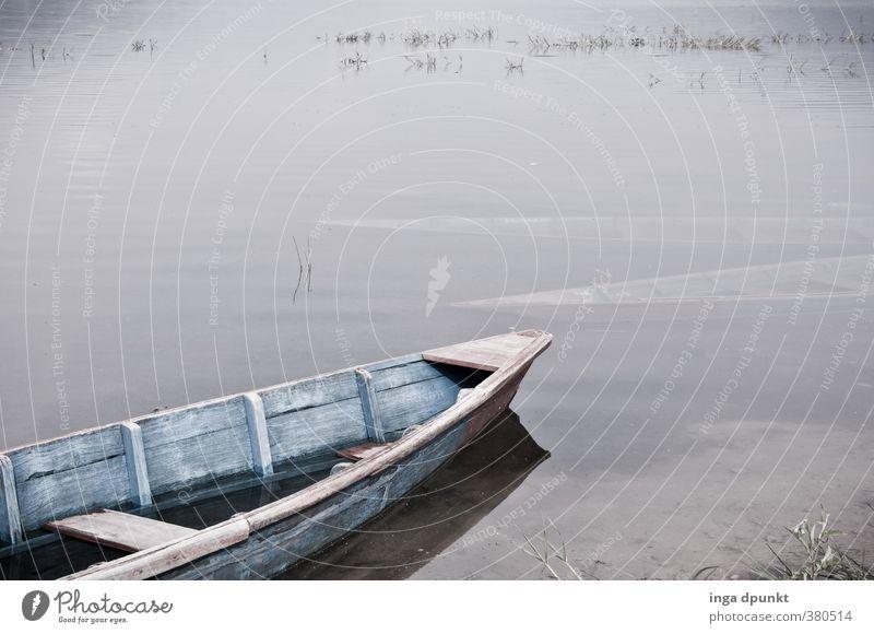 Stiller See Umwelt Natur Landschaft Urelemente Wasser Küste Seeufer dunkel trist grau ruhig Wasserfahrzeug Bootsfahrt Ausflug Ferien & Urlaub & Reisen Ruderboot