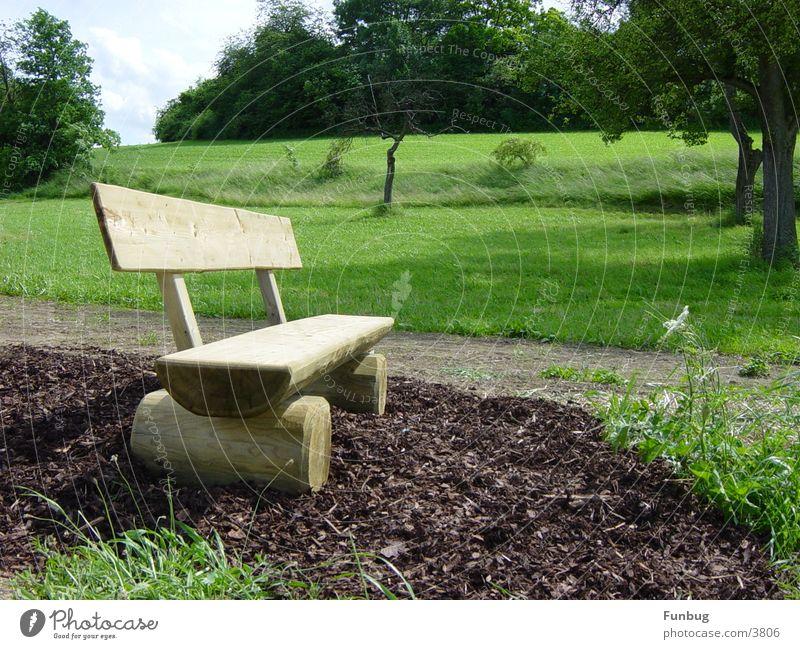Die stille Bank grün ruhig Erholung Wiese Garten Holz Park Denken wandern Wind sitzen Platz Idylle Konzentration Holzmehl