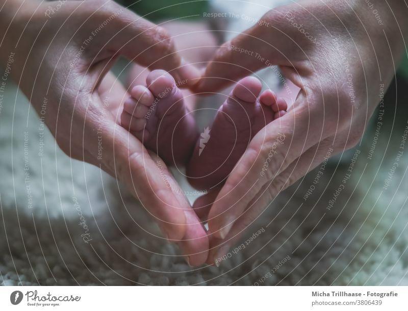 Babyfüßchen im Herz aus Händen Kind Kleinkind Mutter Vater Eltern Junge Mädchen Frau Mann Familie & Verwandtschaft Fuß Zehen Finger Hand Haut 0-12 Monate Liebe