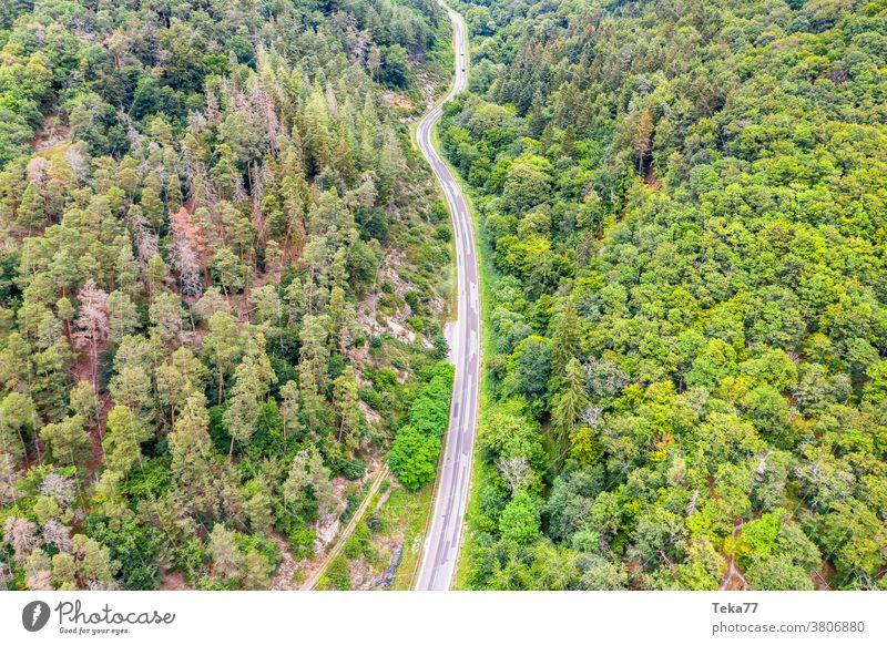 eine Waldstraße von weit oben Straße Baum Bäume Transport leer Beton Mischwald Nadelbaum von oben Wald von oben Straße von oben