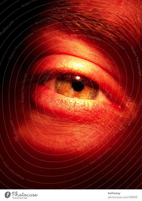 düsterer Blick Wimpern Augenbraue Mann Makroaufnahme düstere Beleuchtung Regenbogenhaut halb geschlossenes Auge