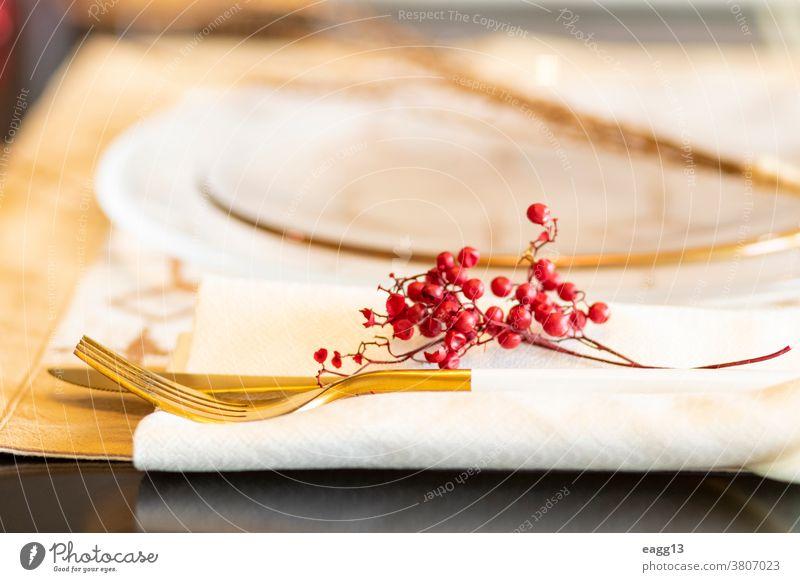 Eleganter gedeckter Tisch für das Weihnachtsessen Weihnachten Ordnung Kerze feiern Feier Champagne Besteck Dekor dekorieren Dekoration & Verzierung dekorativ