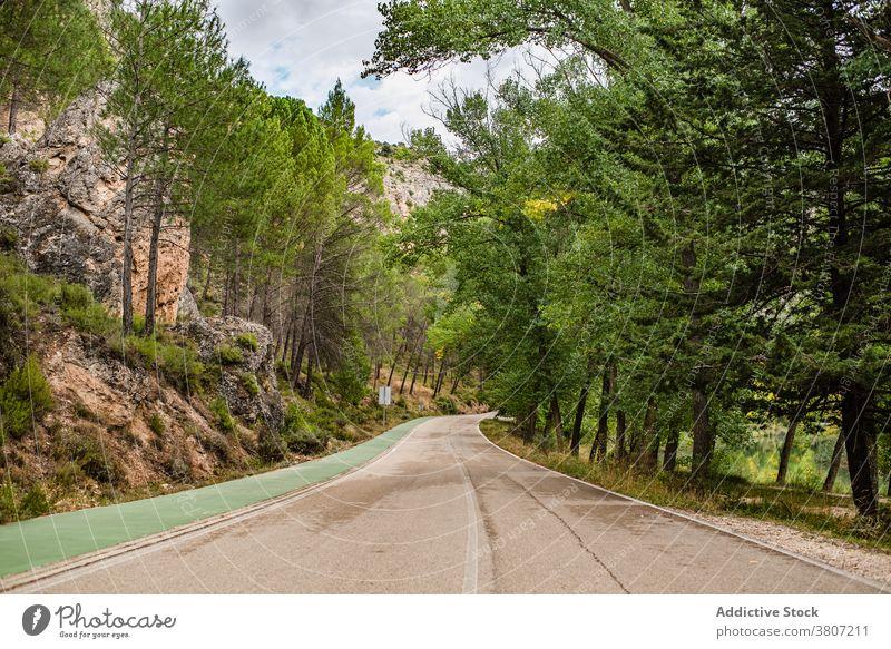 Kurvenreiche Strecke durch bergigen Wald Straße Berge u. Gebirge leer Natur Fahrbahn Land Asphalt Sommer reisen Spanien Cuenca Reise Landschaft Ausflug Weg