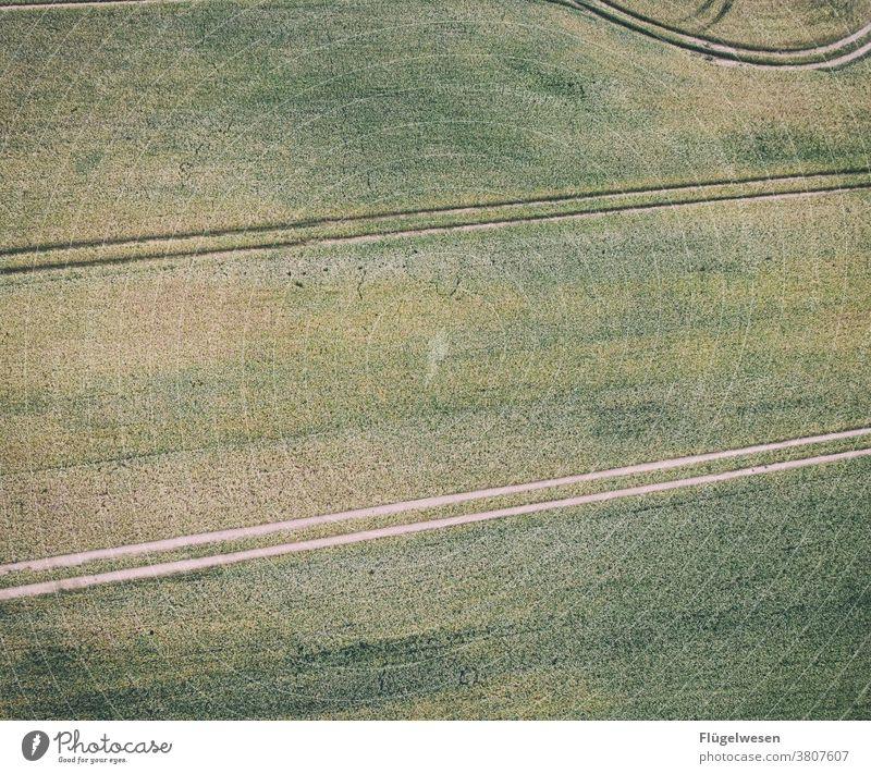 Von oben 2 Luftbild Drohnen Drohnenaufnahme Drohnenansicht Feld Feldrand Feldarbeit Felder Spuren spurenlesen spurensuche Wege & Pfade Getreide Getreidefeld
