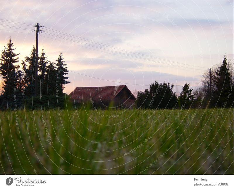 Die alte Scheune gegenüber Gras Oberleitung Froschperspektive Sonnenuntergang ruhig Vergänglichkeit Herbst Abend Himmel Hütte Idylle Hut worms eye calm