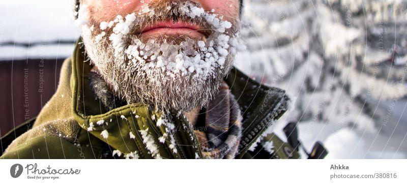 Nahaufnahme eines Bartes mit viel Eis, Skandinavien Ferien & Urlaub & Reisen Abenteuer Expedition Winter Schnee Wintersport Mensch maskulin 1 Natur Vollbart