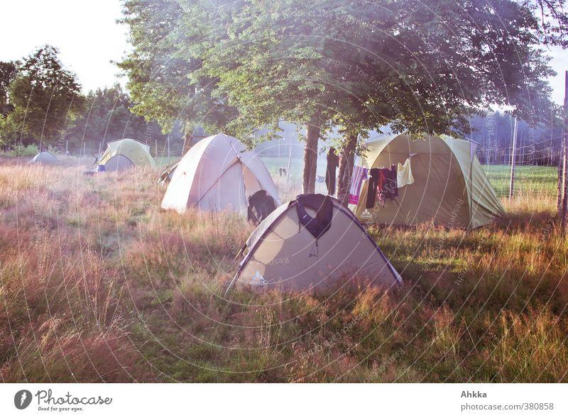Sommerliches Zeltlager mit Holzfeuerrauch, Wäscheleine, Schweden Ferien & Urlaub & Reisen Abenteuer Ferne Freiheit Camping Sommerurlaub Natur Schönes Wetter