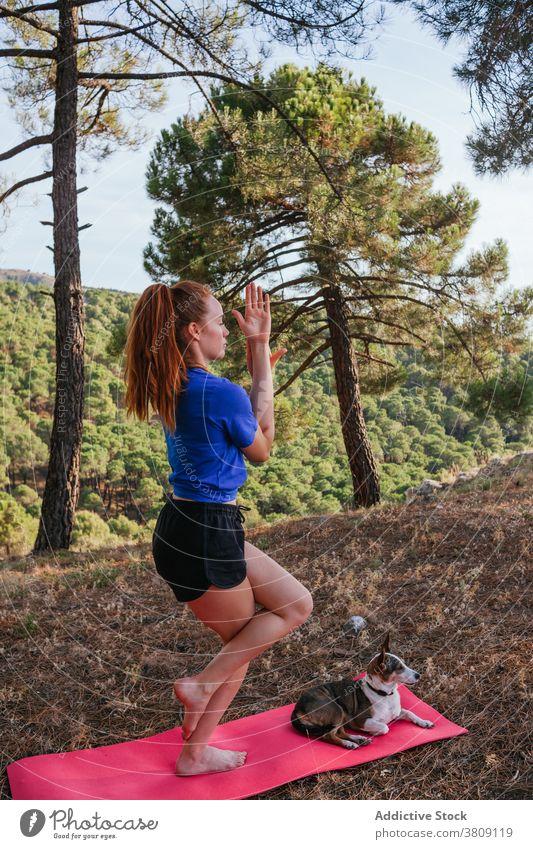 Serene Frau steht in Eagle Pose auf Yoga-Matte Adler-Pose garudasana Gleichgewicht üben Asana Hund Natur Wald Unterlage gehorsam Konzentration Windstille