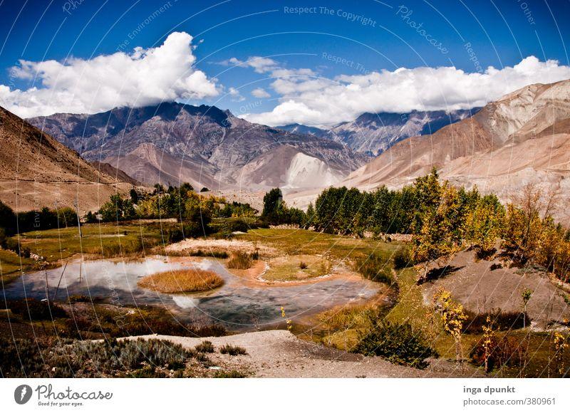 Rastplatz Umwelt Natur Landschaft Pflanze Himmel Wolken Herbst Klima Schönes Wetter Baum Wildpflanze Felsen Berge u. Gebirge Gipfel Nepal Asien Annapurna