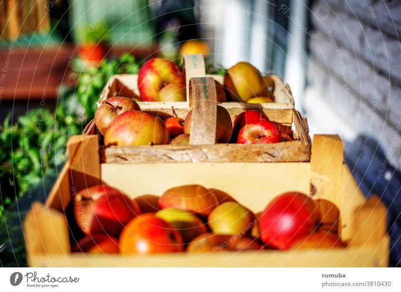 Äpfel frisch geerntet in Körben Korb sauer lecker genießen Gesundheit Ernährung Apfel Frucht Schwache Tiefenschärfe Tag Textfreiraum oben Hintergrund neutral