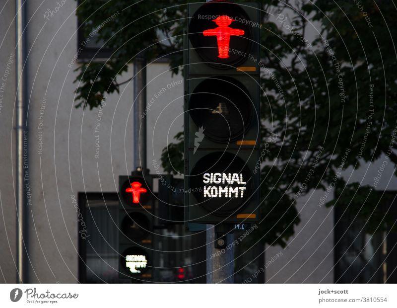 Rote Ampel, Signal kommt für Fußgänger Mobilität Verkehrswege Piktogramm leuchten Fußgängerampel ampelmännchen Verkehrszeichen Wort Technik & Technologie rot