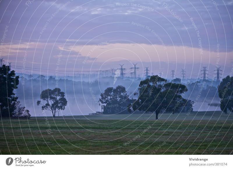 Elektrische Masten Beruf Industrie Energiewirtschaft Technik & Technologie Natur Himmel Wolken Sonnenaufgang Sonnenuntergang Nebel Baum Gras Park Teich See