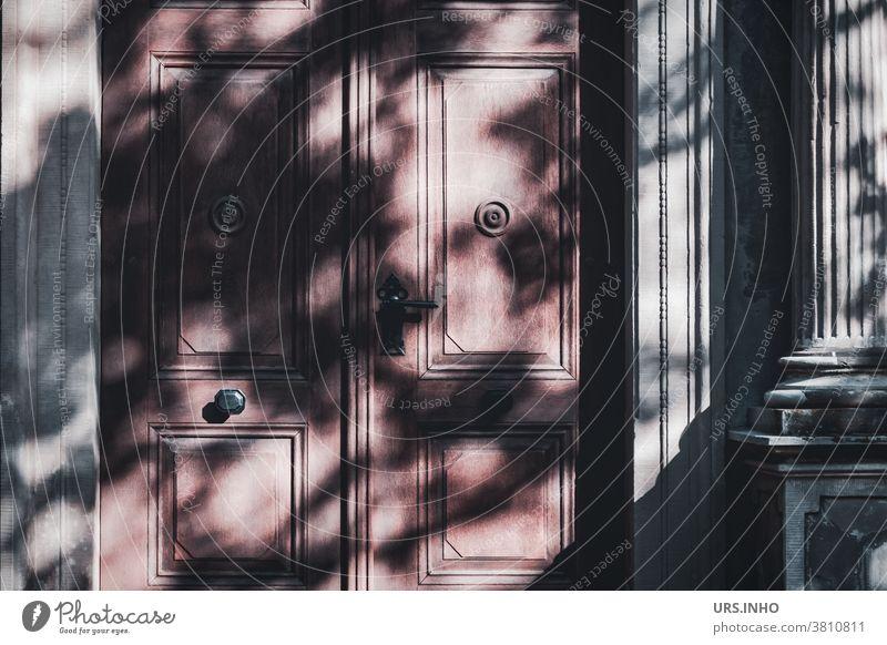 der Schatten malt Blätter eines Baumes auf die große Eingangstür Tür Ausgang Licht Säule geschlossen verschlossen Schattenspiel menschenleer Tor Griff