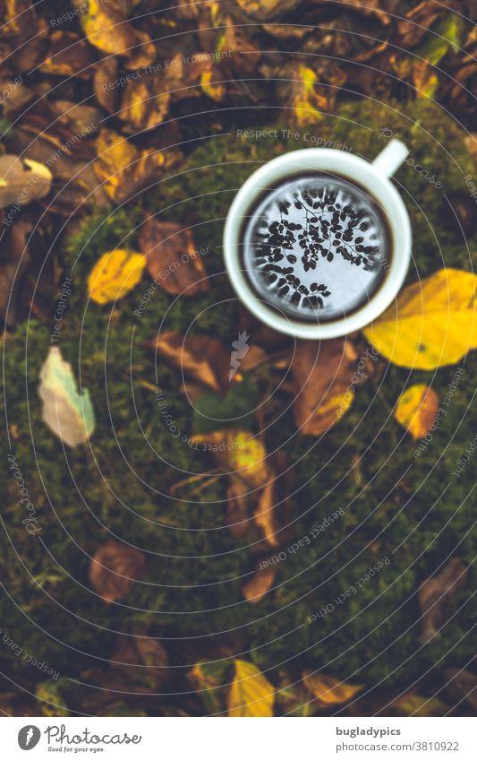 Eine weiße Tasse mit Kaffee / Tee steht auf dem Waldboden. Die Blätter der Bäume spiegeln sich im Getränk. Das Bild ist in Herbstfarben gehalten. Kaffeetasse
