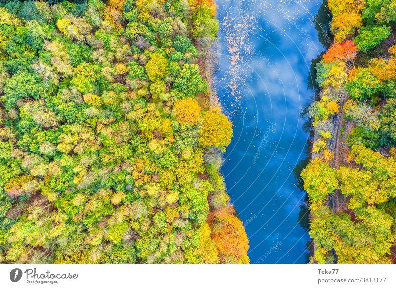 ein Herbstfluss von oben Fluss fallen Fallfluss Wasser Baum Bäume Reflexion & Spiegelung Fluss von oben Wald von oben orange gelb grün Wolken wolkig