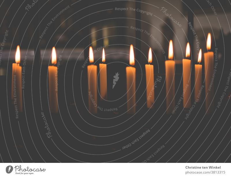 Brennende Kerzen in einer kleinen Kapelle spenden Trost, Licht und Wärme Kirche Religion & Glaube Kerzenaltar Hoffnung Gebet Dankbarkeit beten Christentum